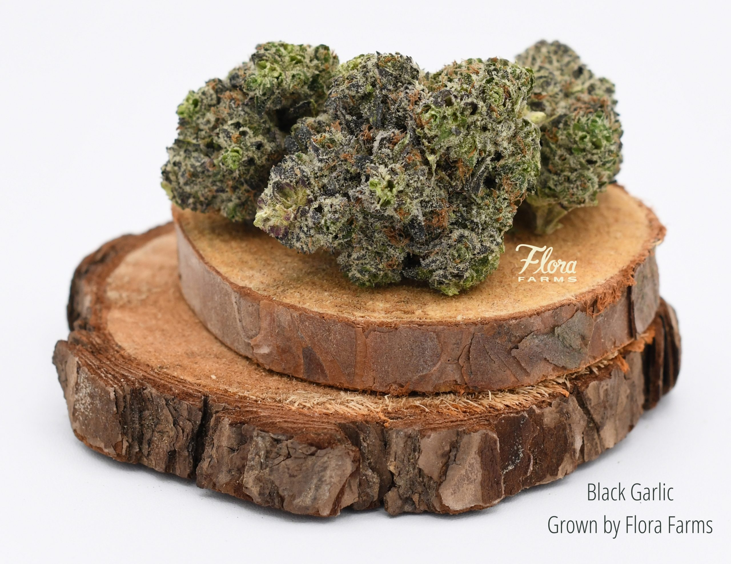 Black Garlic nugs staged on two wood disks grown by Flora Farms