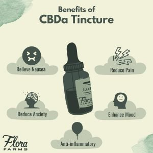 Infographic about the benefits of CBDA