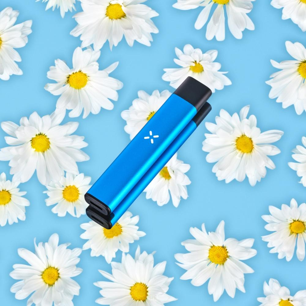 PAX Era Pro in blue against a backdrop of blue with daisies.